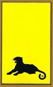 panthere-persan