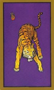 tigre-persan